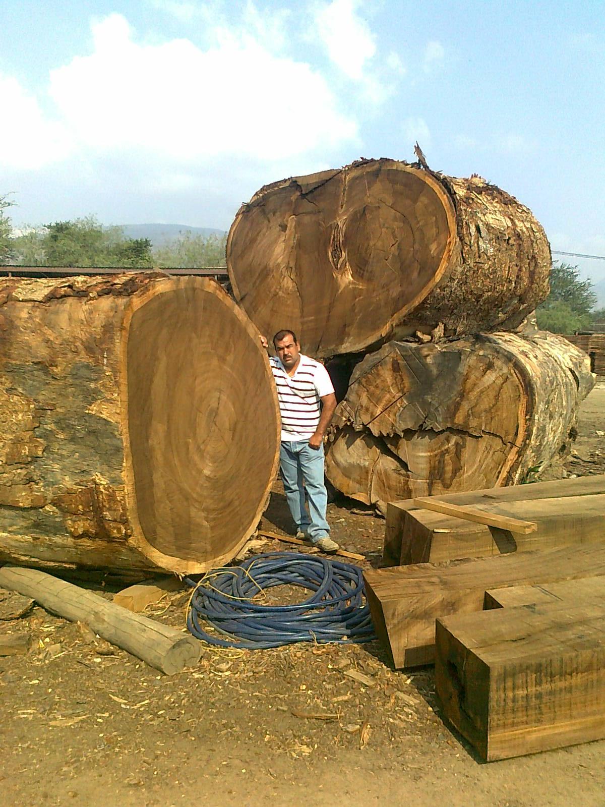 非洲木材供应
